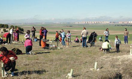 Repoblación con Ecologistas en Acción en Pinto