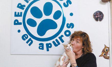 Nuria Fernández, Vicepresidenta de la Asociación Perrigatos en Apuros de Pinto