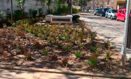 Avanzan las obras de mejora de diversas zonas verdes del municipio