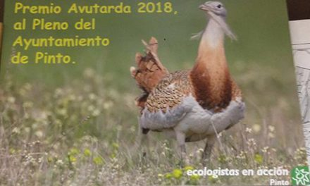 El Pleno del Ayuntamiento de Pinto, premio Avutarda 2018, de Ecologistas en Acción