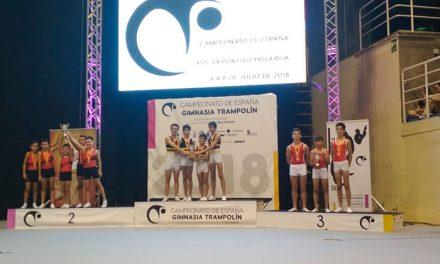 Jorge Martín y Jorge Cazorla campeones de España de trampolín