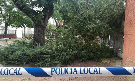 Policía Local de Getafe realiza cerca de 60 intervenciones por la tormenta de ayer