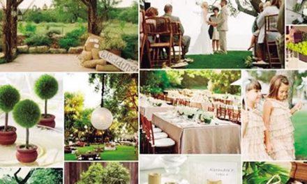 Eventos ecofriendly