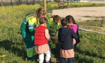 Alumnos y alumnas de colegios de Getafe Norte llevarán a cabo una plantación de árboles