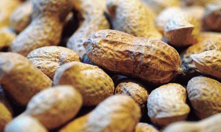 Avances en alergia alimentaria