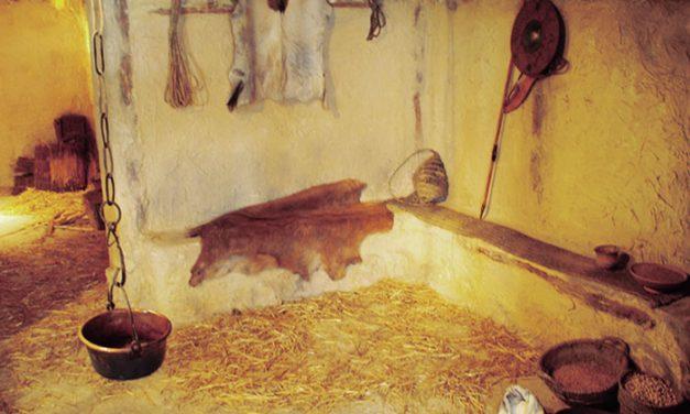 Hábitat carpetano de Miralrío, Rivas-Vaciamadrid
