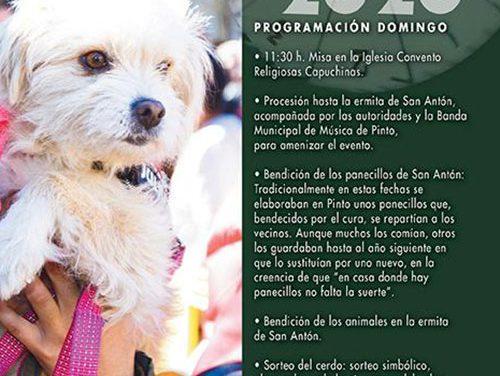 Pinto celebra este domingo 19 de enero la fiesta de San Antón