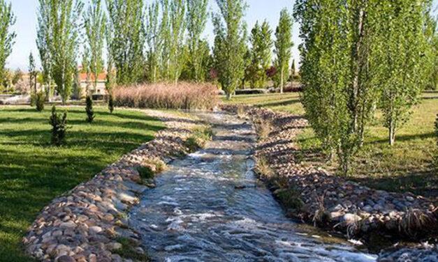 El Gobierno Municipal toma medidas ante el estado del lago del Parque Juan Carlos I