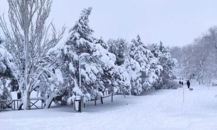 Dos polideportivos y el Hotel Princesa de Éboli sirvieron de refugio durante el fin de semana a más de un centenar de personas atrapadas en Pinto por la nieve